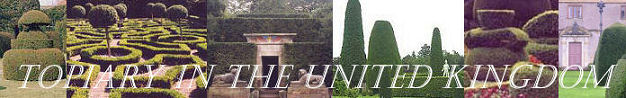 Topiary in UK Banner