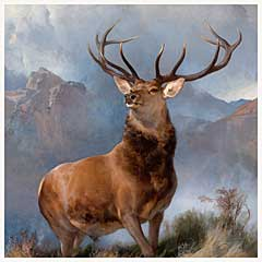 Monarch of the Glen. 1851. National Gallery of Scotland