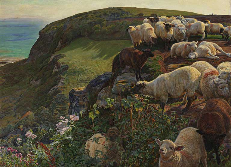 Our English Coast (strayed sheep). 1852. Tate Gallery